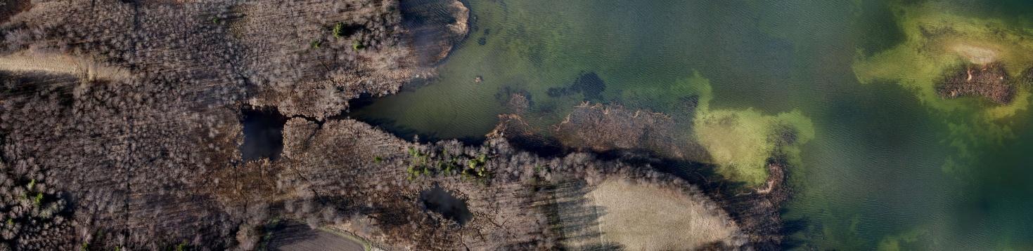 Vandens ekosistema